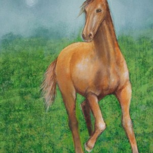 Chestnut Filly-500